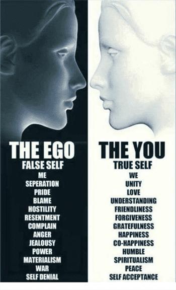 ayahuasca-ego