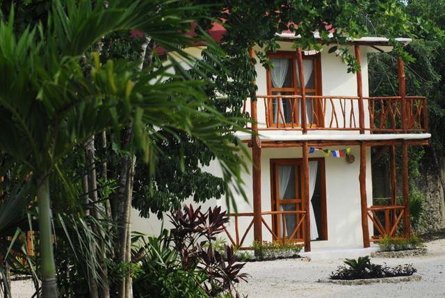 ayahuasca cancun