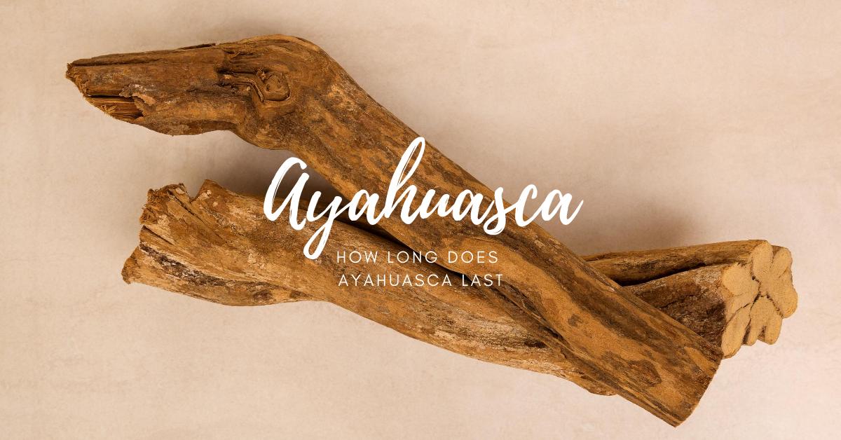 how long does ayahuasca last