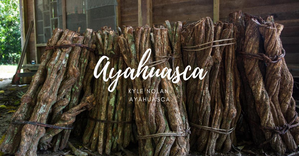 kyle nolan ayahuasca
